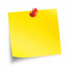 Hîrtie și blocuri pentru notițe (31)