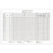 Tabelul de Evidenta a Folosirii Timpului de Munca A4/100
