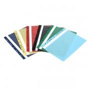 Dosar cu șină plastic mat A4 cu şină şi 11 găuri de încopciat